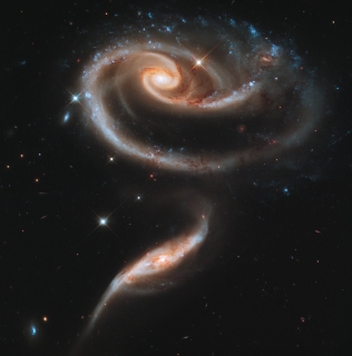 "A ""Rose"" of Galaxies"