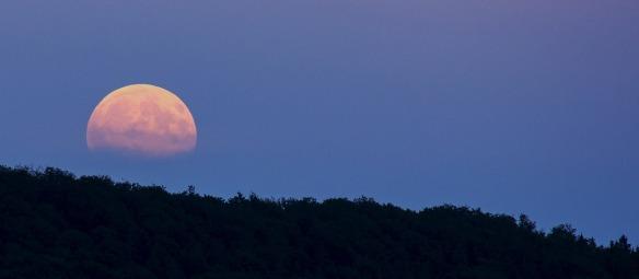 full-moon-914410_1280